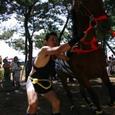 09暴れる馬